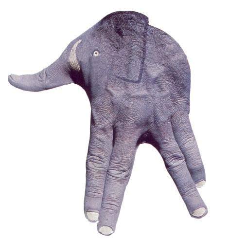 слоненок фото боди арт