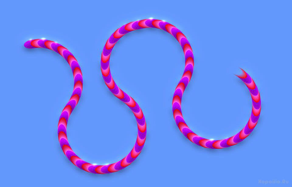 оптическая иллюзия ползущей змейки